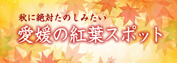 愛媛の紅葉狩り特集